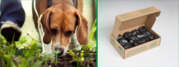 Buy Compostable Dog Waste Bags Online- BioBag